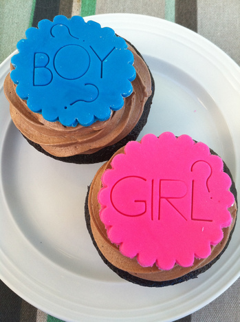 A photograph of a pair of cupcakes, one has a blue flower on top with the word 'boy' and two question marks, the other has a pink flower with the word 'girl' and a question mark.